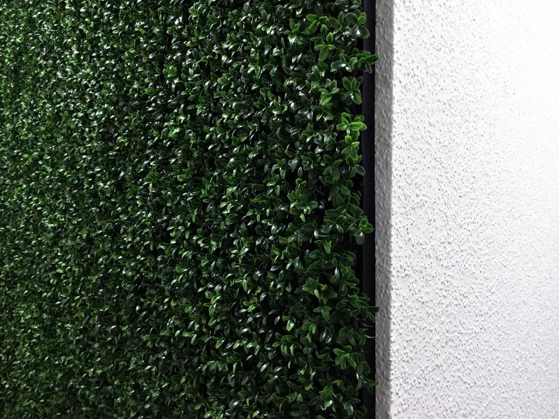 Die Grüne Wand